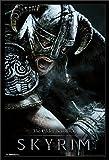 "Trends International Elder Scrolls Skyrim Aerial Mounted Poster 22.375"" x 34"""