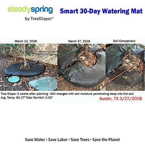 """Smart Tree Watering Bags - AUTO Refills with RAIN and Slow Releases As Plant Needs - New Water Absorption Slow Release Technology Prevents Over/Under Watering Large Self Water 36"""" Ring for Trees 4pk"""