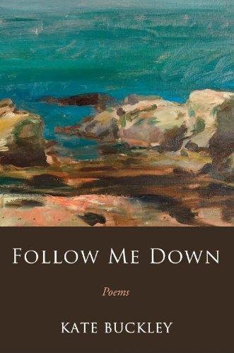 Follow Me Down ebook
