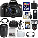 Canon EOS Rebel T6i Wi-Fi Digital SLR Camera & EF-S 18-135mm is & 55-250mm is STM Lens 64GB Card + Case + Filters + Tripod + Flash + Kit