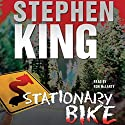 Stationary Bike Audiobook by Stephen King Narrated by Ron McLarty