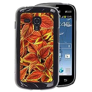 A-type Arte & diseño plástico duro Fundas Cover Cubre Hard Case Cover para Samsung Galaxy S Duos S7562 (Floral Autumn Maroon Green Red)