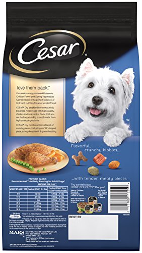 Cesar-Small-Breed-Dry-Dog-Food