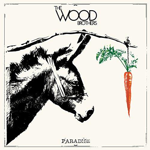 wood brothers vinyl - 2