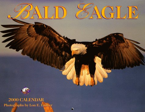 Two Bald Eagles - 9