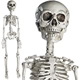 """Prextex 30"""" Halloween Skeleton- Full Body Halloween Skeleton with Movable Joints for Best Halloween Decoration"""