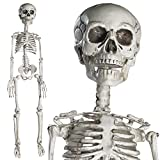 Prextex Full Body Halloween Skeleton Decoration with Movable Joints Deal (Small Image)