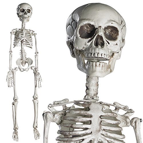 "[Prextex 30"" Halloween Skeleton- Full Body Halloween Skeleton with Movable Joints and 2 Sets of Body Accessories for Best Halloween] (Hanging Halloween Props)"