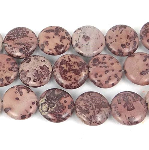 - ShopForAllYou Decoration Beads 16mm Natural Apache Sage Picture Jasper Coin Disc Beads (12)
