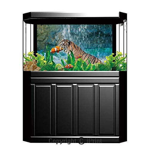 Terrarium Fish Tank Background,Tiger,Feline Beast in Pond Searching for Prey Sumatra Indonesia Scenes Decorative,Turquoise Light Brown Black,Photography Backdrop for Pictures Party Decoration,W48.03