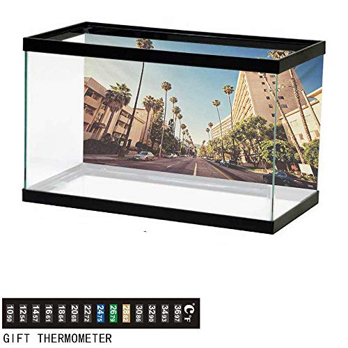 wwwhsl Aquarium Background,Urban,A Street in Beverly Hills California Palm Trees Houses Famous City Photo,Pale Blue Peach Green Fish Tank Backdrop 48