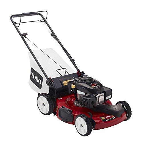22 in. Kohler Low Wheel Variable Speed Self-Propelled Gas Lawn Mower (Toro 22 Inch Self Propelled Lawn Mower)