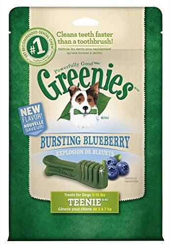 GREENIES Blueberry Flavor TEENIE Dog Dental Chews  - 12 Ounc