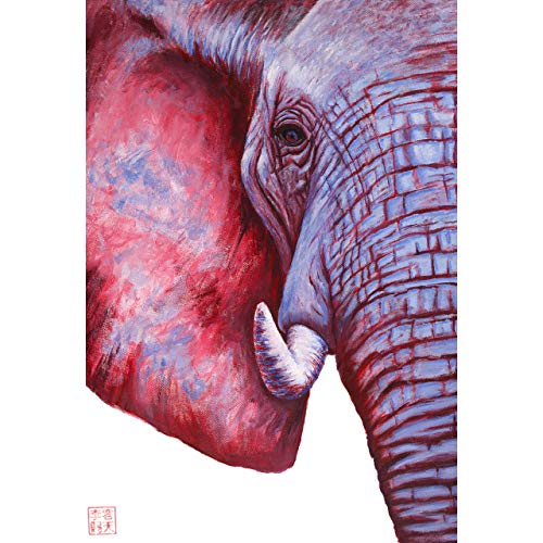 Elephants Fine Art - Andrew Lee Artwork – Zen Elephant Painting Fine Art Print – Easily Framed for Wall Hanging, Kids Nursery, Bathroom Décor, Replaces Canvas - Colorful Blue, Red, Pink, White, and Purple Pop