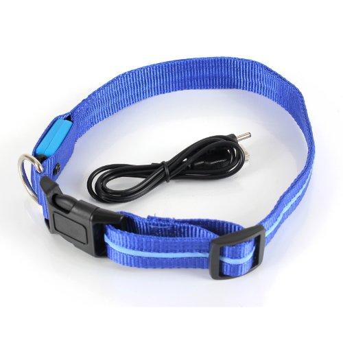 2-Tech-Collier--clairage-LED-rechargeable-pour-chien-Chargeur-USB-Bleu-Taille-L-Tour-de-cou-35-55-cm