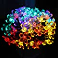Lalapao Battery Operated Timer String Lights 50 LED Blossom Flower Fairy Christmas Decor For Outdoor Indoor Garden Patio Decorations (Multi Color)