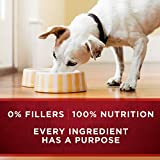 Purina ONE Grain Free, Natural Pate Wet Dog