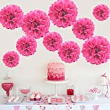 HKBAYI 10pcs/lot 16inch 16'' 40cm Large Hanging tissue paper pom pom flowers round fluffy balls for birthday baby shower wedding home party decorations supplies (16 inch, Hot pink)
