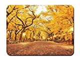 Mouse Pad - Park, Lampposts, Customized Rectangle Non-Slip Rubber Mousepad Gaming Mouse Pad