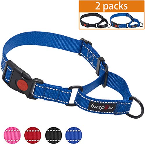 haapaw Martingale Dog Collar with Quick Release Buckle Reflective Dog Training Collars for Small Medium Large Dogs(2 Packs) (Large, ()