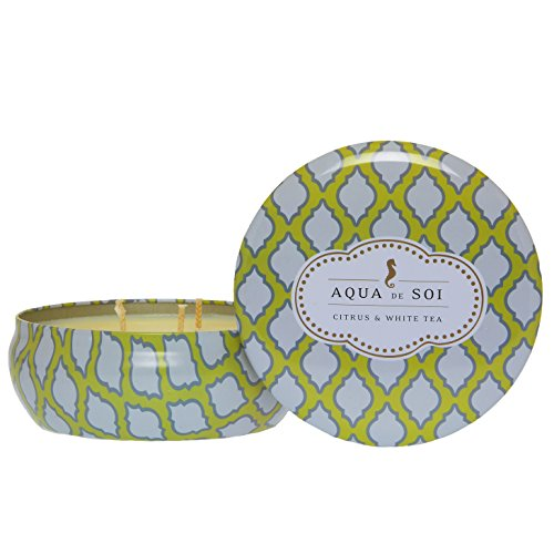 SOI Company Citrus and White Tea 3 Wick Candle, 21 oz ()