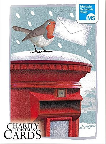 Box of 12 Robin & Hare MS Multiple Sclerosis Trust Charity Christmas Cards Boxed (Charity Cards Christmas Robin)