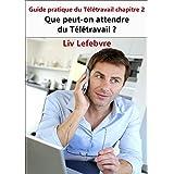 Que peut-on attendre du Télétravail ?: Guide pratique du Télétravail chapitre 2 (French Edition)