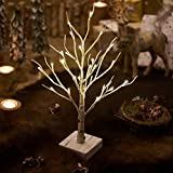 Hairui Lighted Tabletop Artificial Winter Birch Tree 24 LED 18IN Battery Operated with Timer for Christmas Tree Decoration Indoor Use