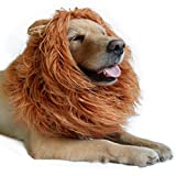 #1: Lion Mane for Dog-Dog Costume DIBBATU Lion Wig for Large or Medium Dogs Halloween Christmas Gift Fancy Hair (Red brown)