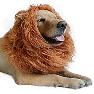 DIBBATU Lion Mane for Dog-Dog Costume Lion Wig for Large or Medium Dogs Halloween Fancy Hair
