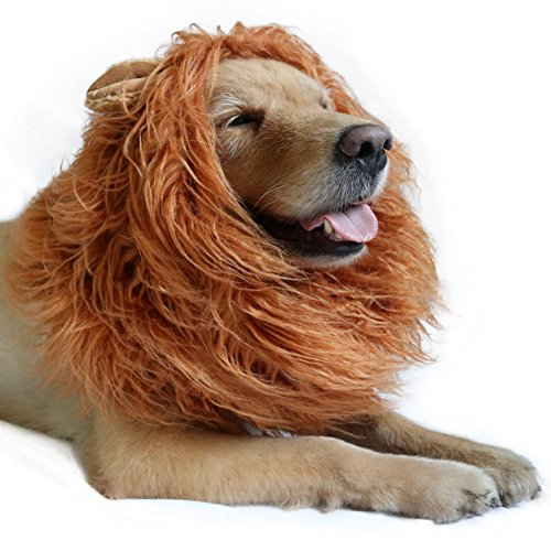 DIBBATU Lion Mane Costume Lion Mane Wig for Large/Medium Dogs Halloween Fancy Hair, Brown -