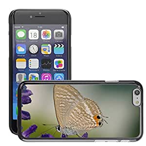 """Hot Style Cell Phone PC Hard Case Cover // M00114140 Great Wanderbl??uling Butterfly // Apple iPhone 6 4.7"""""""