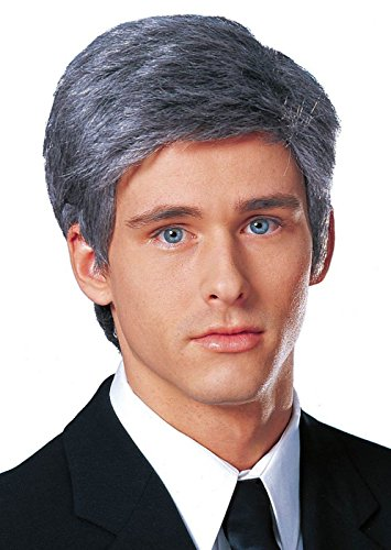 Costume Culture Men's Commander In Chief Wig, Grey, One Size