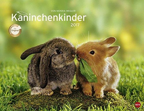 Kaninchenkinder Posterkalender - Kalender 2017