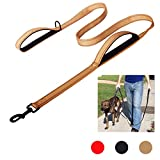 Bacoby 3M Reflective Dog Leash 5ft Long Traffic Padded Handle, Dog Training Leash Heavy Duty, Double Handle Lead Greater Control Safety Training, Perfect Large Medium Dog (Yellow)
