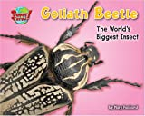 Goliath Beetle: One of the World's Heaviest Insects (Supersized!)