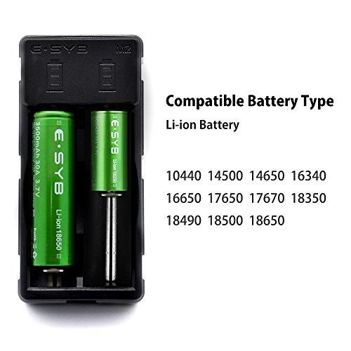 18650 Battery Charger, ESYB M2 2 Bay Speedy Charger with USB Port for 3.7V Li-ion Rechargeable Battery Flashlight Head Lamp Handheld Mini Fan VTC5 VTC6 GA 25R 30Q HG2 PF