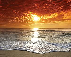 JP London MD4022PS uStrip Peel and Stick Mural Tahitian Sunset Beach Full Wall Mural, 8.5-Feet High by 10.5-Feet Wide