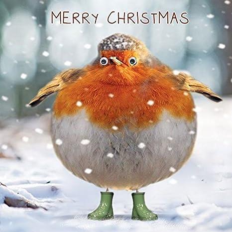 Immagini Natale Che Si Muovono.Biglietti Di Natale Divertente Cute Fat Robin Stivali Con