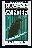 Ravens in Winter, Heinrich, 1476782342
