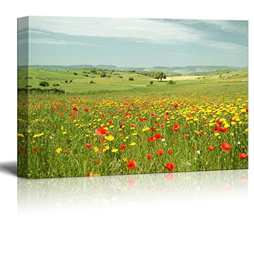 Beautiful Scenery Landscape Flowering Meadow with Poppies and Yellow Daisies Wall Decor