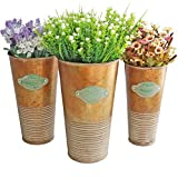 HyFanStr Set fo 3 Distress Coppery Rustic Metal Pot Country Style Milk Can Vase for Flower