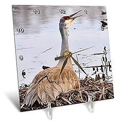 3dRose Dreamscapes by Leslie - Birds - Sandhill Crane Calling its Mate - 6x6 Desk Clock (dc_292243_1)