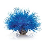 Product review for biOrb Sea Lily, Blue