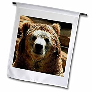 WhiteOak Photography-Bears - Grizzly Bear just out of water - 18 x 27 inch Garden Flag (fl_57719_2)