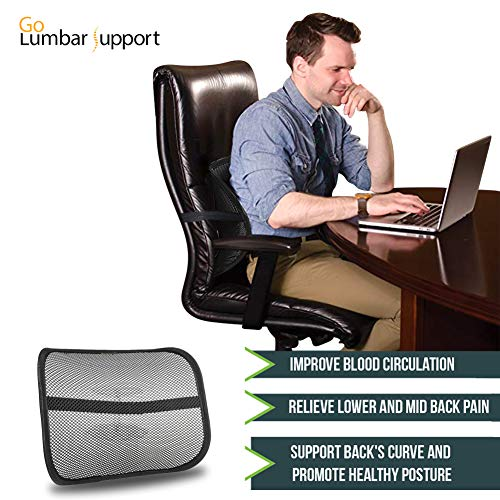 Peachy Lumbar Lower Back Support For Car Seat And Office Ergonomic Home Interior And Landscaping Ologienasavecom