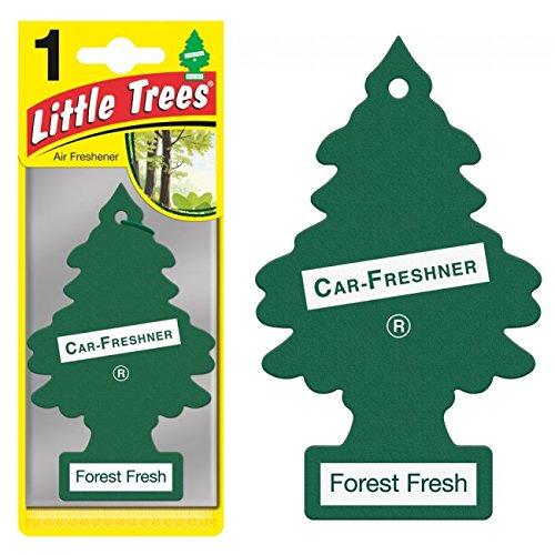 Fresh Air Freshner (Magic Tree Little Trees Car Home Air Freshener Freshner Smell Fragrance Aroma Scent - FOREST FRESH (24 Pack))