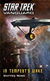 Vanguard: In Tempest's Wake (Star Trek: Vanguard Book 9)