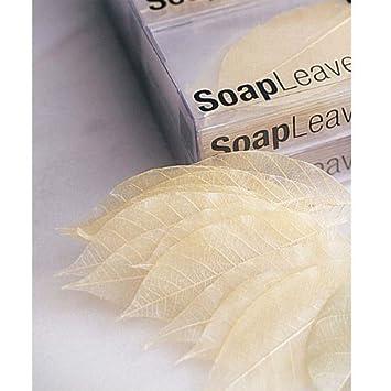 Amazon.com : Design Ideas Soap Leaves-Box/20-Ivory : Hand Soaps : Beauty