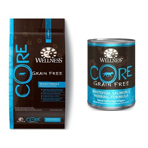 Wellness Well Pack: CORE Ocean Grain Free Wet Canned, Dry Dog Food (Wellness Core Dog Food Canned compare prices)